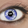 Eye with planet earth — Foto de Stock