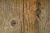 Weathered wood — Stock Photo
