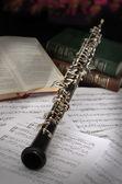 Configuración vintage oboe — Foto de Stock