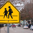 Stock Photo: School Crosswalk Sign