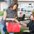 Two Women Shopping — Stock Photo #27681771