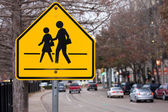 School Crosswalk Sign — Stock Photo