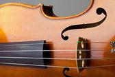 Violin Bridge and Strings — Stock Photo