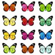 Set of colorful vector butterflies — Stock Vector #27559299