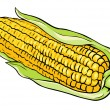 Vector corn on the cob — Stock Vector