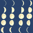 Vector phases of the moon  — Stock Vector