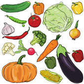 Vector set of vegetables — Stock Vector