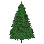 Vector cartoon fir-tree — Stock Vector