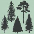 Vector set of coniferous trees silhouettes — Stock Vector
