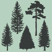 Vector set of coniferous trees silhouettes — Stockvektor
