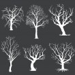 Vector set of white bare trees silhouettes — Stock Vector #35993093