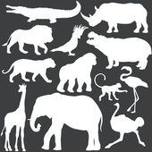 Vector set of white tropical animals silhouettes — Stock Vector