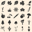 Vector set of plants icons — Stock Vector #37665535