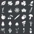 Vector set of white plants icons — Stock Vector #38663951