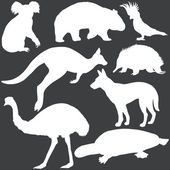 Vector set of white australian animals silhouettes — Stock Vector