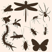 Vector Set of Insects Silhouettes: mosquito, fly, cockroach, spider, dragonfly, bee, wasp, grasshopper, chafer, butterfly, ant, scolopendra — Stock Vector