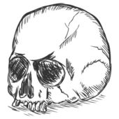Vector sketch illustration - old stale skull — Stockvektor