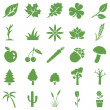 Vector set of green plants icons — Stock Vector