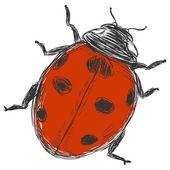 Vector sketch illustration - ladybug — Vettoriale Stock