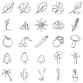 Vector Set of Sketch Plants Icons — Stock Vector