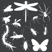 Vector Set of white Insects Silhouettes — Stock Vector