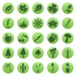 Vector Set of Plants Icons — Stock Vector #47861397