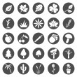 Vector Set of Plants Icons — Stock Vector