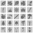 Set of Plants Icons — Stock Vector #47887689