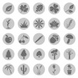 Set of Plants Icons — Stock Vector #47931523