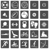 Vector Set of Sport Icons — Stock Vector