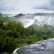 Iguazu Falls in Argentinand Brazil, one of Seven Wonders o — Stock Photo #31070775