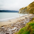 Stock Photo: Coastline in East Cape, North Island, New Zealand.