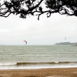 Stock Photo: Kitesurfers, Northland, New Zealand.