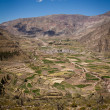 Farmland in Colca Valley, Peru. — Stock Photo