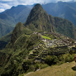 Stock Photo: Overview of Macchu Picchu and HuaynPicchu with llama.