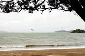 Kitesurfers, Northland, New Zealand. — Stock Photo