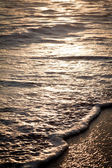 Foaming waves on the beach at sunset. — Stockfoto