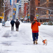 Stock Photo: Mounted policemwalks horse and resident walks dog in snow, Lo