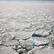 Stock Photo: Ice floes on Hudson River, New York, with view of Jersey C