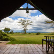 Landscape from inside of luxury tented camp. — Stockfoto #32625527