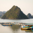 Floating homes in HLong Bay near sunset. — Stock Photo #37567545