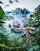 Cruise ships dock near Surprise Cave (Hang Sung Sot), Ha Long Bay. — Foto de Stock