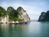 Commercial boats moored in Ha Long Bay. — Zdjęcie stockowe
