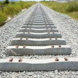Railway tracks in a rural scene — Stock Photo