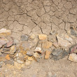 Stock Photo: Dry earth texture