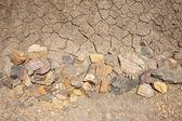 Dry earth texture — Stock Photo