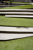 Stairway covered with green grass. — Stock Photo