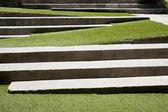 Trap bedekt met groene gras. — Stockfoto