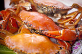 Crabs on plate — Stock Photo