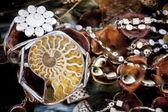 Jewellery rings — Foto de Stock